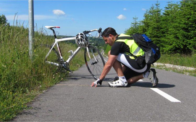 Slovenija : Danska razvoj kolesarjenja in kolesarske infrastrukture